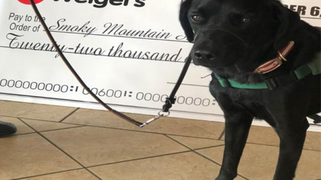 Weigel's Smoky Mountain Service Dog fundraiser