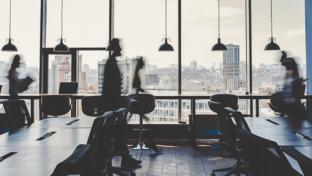 executives in an office